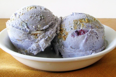 Blueberry Vanilla Cookie Ice Cream