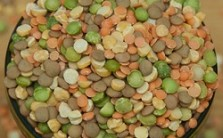 Lentils from Angela Andall